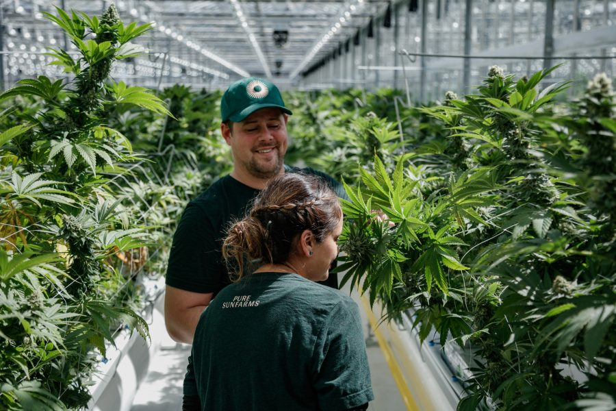Two employees smiling in the greenhouse.