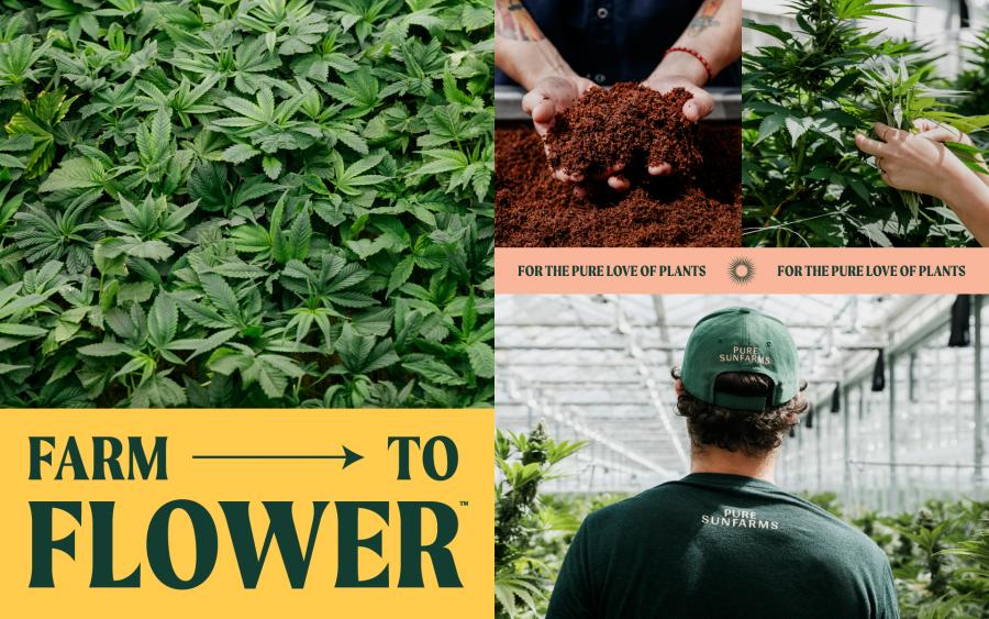 Farm to flower.