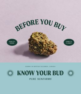 Before you buy, know your bud.