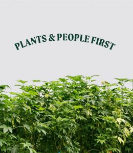 Plants and people first.