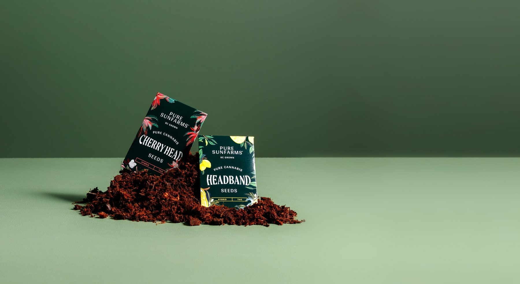 Package of Cherry Head and Headband Seeds sitting on top of a mound of soil.