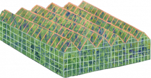 Illustration of a greenhouse.
