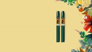 Two vapes on yellow background with floral illustrations on the right side