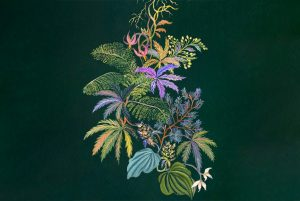 illustration of cannabis plant