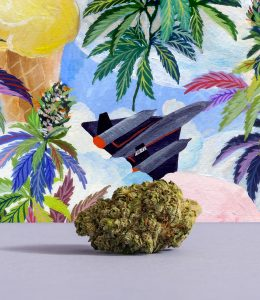 photo of jet fuel gelato bud with illustrations of a plane and cannabis behind it
